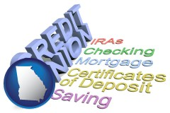 ga map icon and credit union services